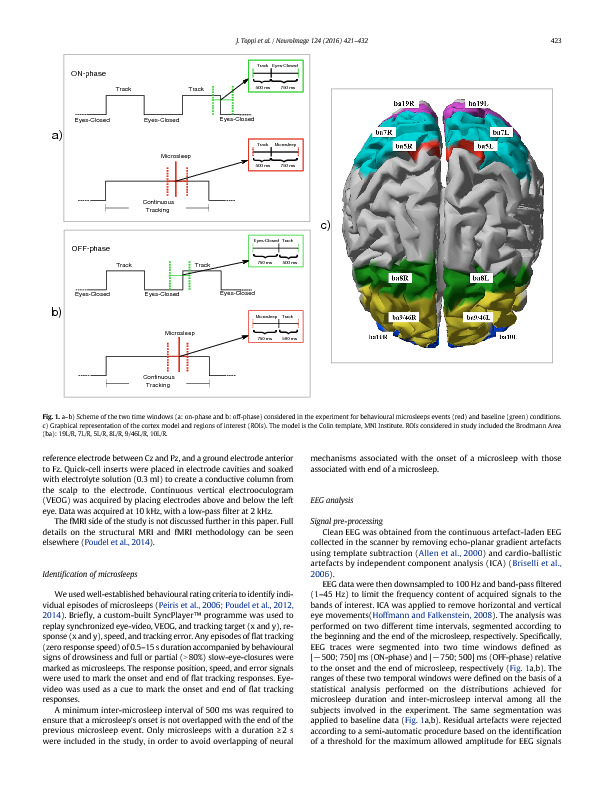 Download Time-varying functional connectivity of the cortical neuroelectric activity associated with behavioural microsleeps.