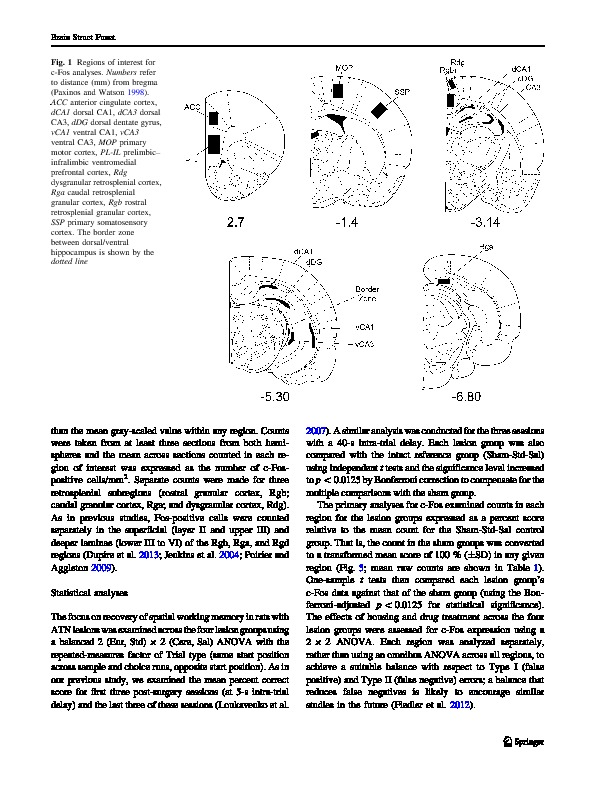 Download Impaired spatial working memory after anterior thalamic lesions: Recovery with cerebrolysin and enrichment.